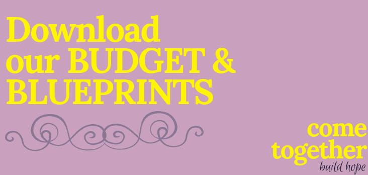 Budget & Blueprint button